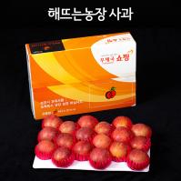 선물용7호 홍로 5kg (17-18과)